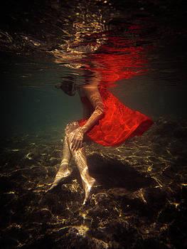 8 by Gemma Silvestre