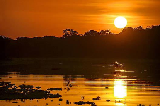 Eduardo Huelin - River in the Amazon Rainforest at dusk Peru