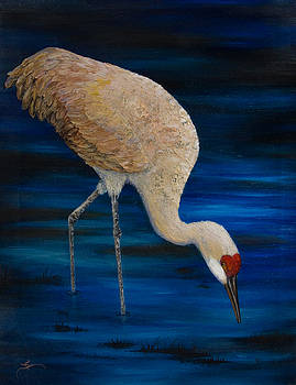 Dee Carpenter - Sandhill Crane