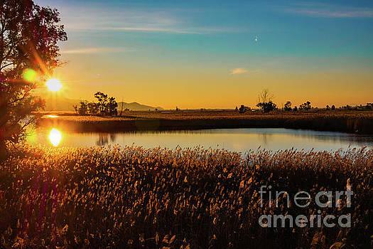 Sunrise in the ditch Burlamacca by Giovanni Bertagna