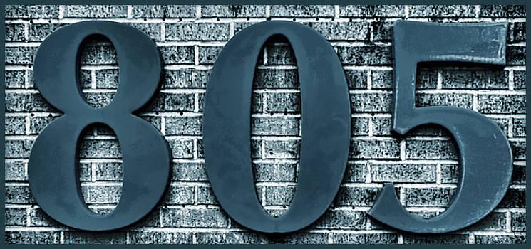 805 Blue Gray  Bricks  with Gray Border by Tony Grider