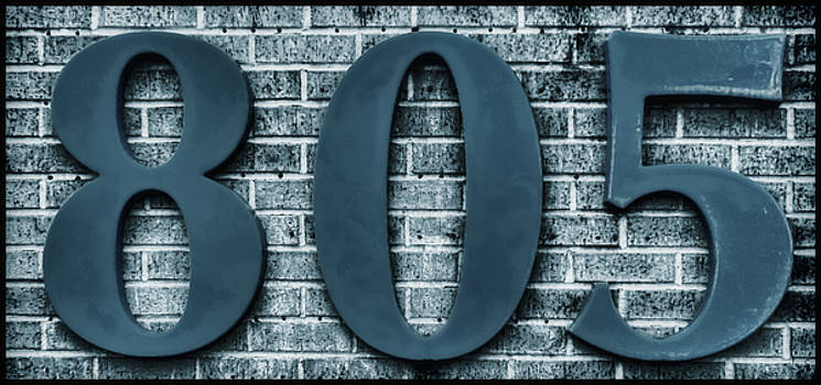 805 Blue Gray Numbers on Bricks Soft-focus by Tony Grider