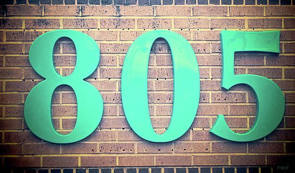 805 Jade on Brown Bricks by Tony Grider