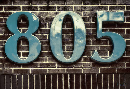 805 Sea Blue and Dark Chocolate by Tony Grider