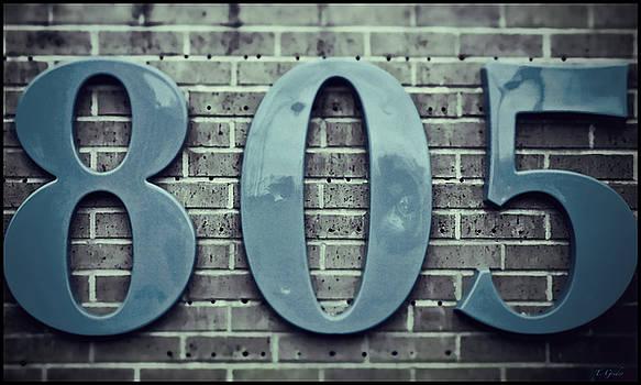 805 Sea Blue on Brick by Tony Grider