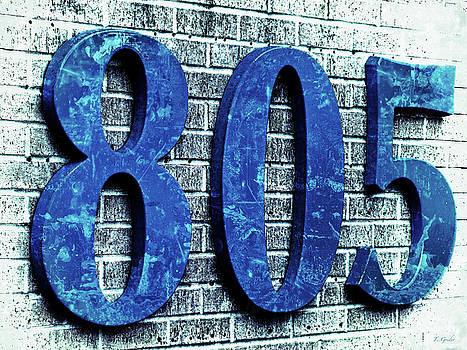 805 Shades ot Blue Texture on Brick by Tony Grider