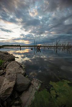 81 Ponds  by Aaron J Groen