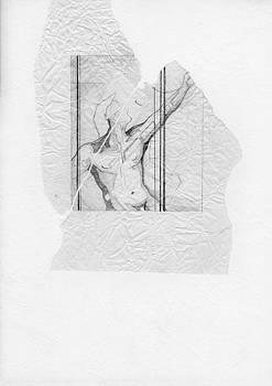 David Hargreaves - 87 - 4
