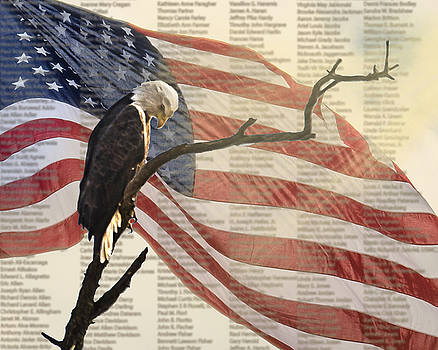 9/11 Eagle Bow by Shirley Tinkham