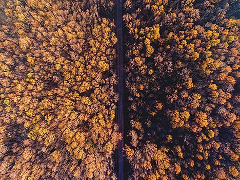 Autumn by Chris Thodd