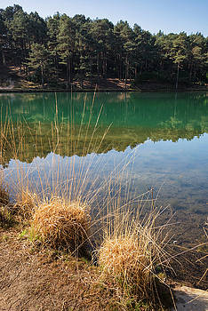 Beautiful vibrant landscape image of old clay pit quarry lake wi by Matthew Gibson