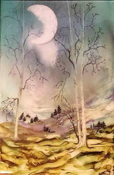 #914 Cloudy Mist by Linda Skibinsky