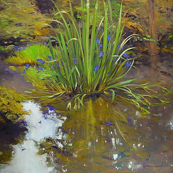 965 Blue Iris and Morning Mist by Chuck Larivey