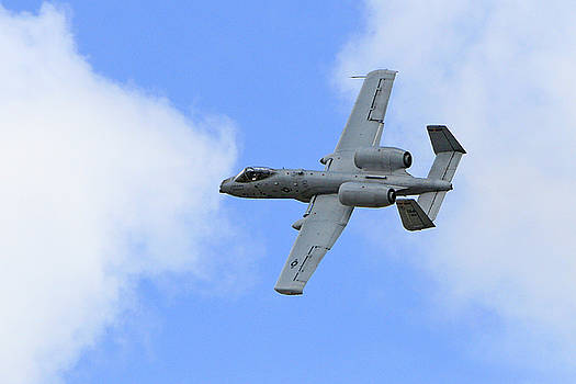 A-10 by Shoal Hollingsworth