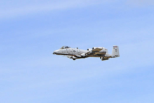 A-10 Thunderbolt II by Shoal Hollingsworth