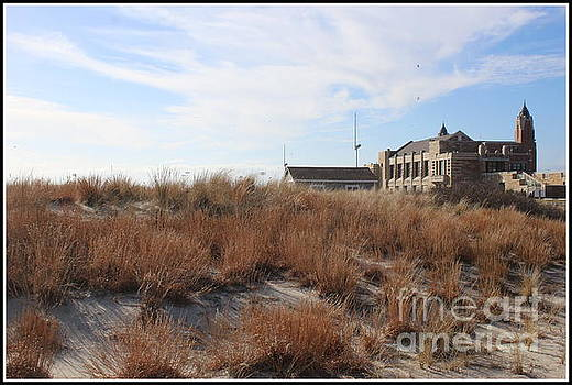 A Balmy Winter Day at Jones Beach by Dora Sofia Caputo Photographic Art and Design
