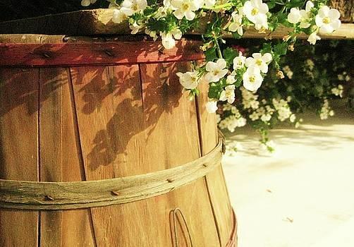 A Barrel Full of Happy by Josephine Z Nyounai