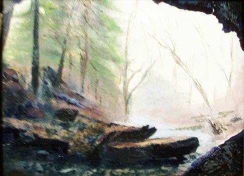 A Bears View by Gail Kirtz