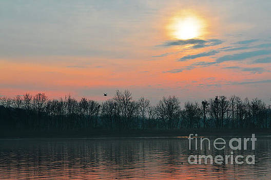 Robyn King - A Beautiful Morning At The Delaware River