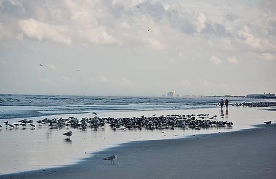 Patricia Twardzik - A Beautiful Stroll on the Beach