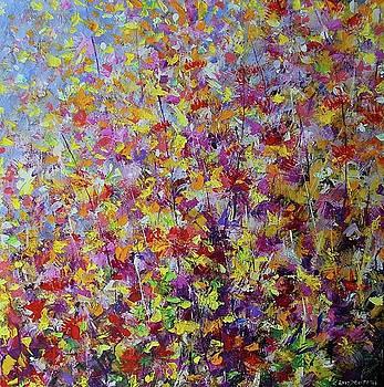 A beautiful summer by Mario Zampedroni