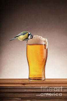 A beer for the birds by Simon Bratt Photography LRPS