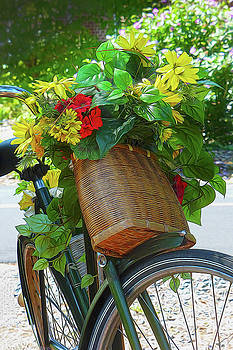 A Bicycle Of Flowers by Robert Meyerson