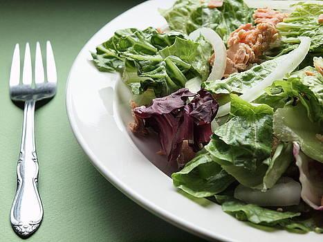 A Big Salad by Valerie Morrison