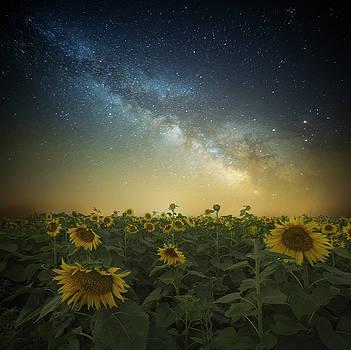A Billion Suns by Aaron J Groen