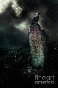 A bit Edgar Allen Poe by Mark Fearon