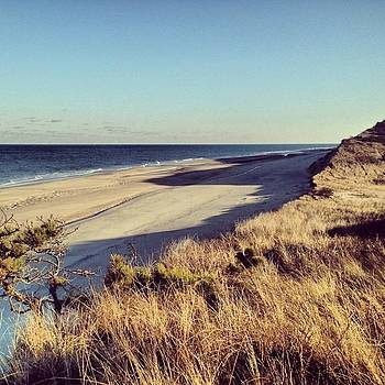 A Bit Of #paradise In #wellfleet by Ben Berry