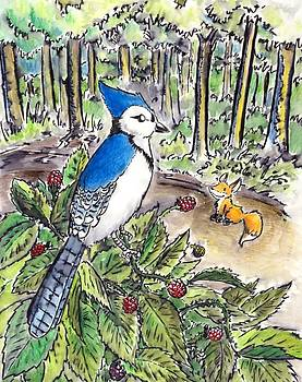 A bluejay was sitting on a large raspberry bush by C Casey Gardiner