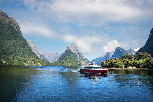 A Boat Cruise at Milford Sound, New Zealand by Daniela Constantinescu