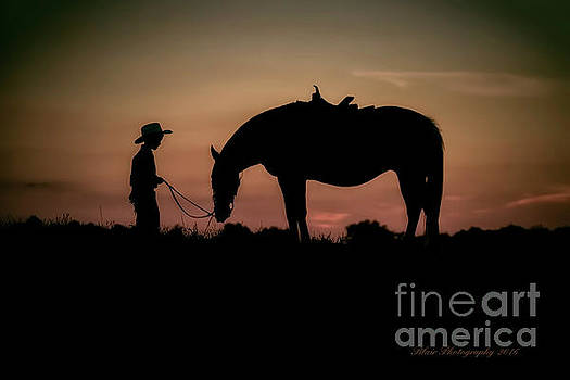 A Boy and His Horse by Linda Blair