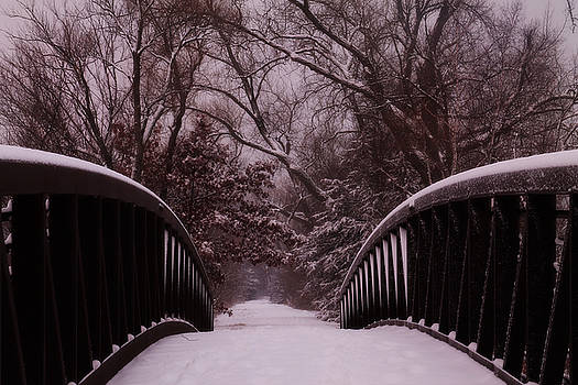 A Bridge in Winter by Melinda Martin