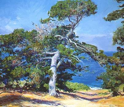 A Carmel Pine 1918 by Guy Rose