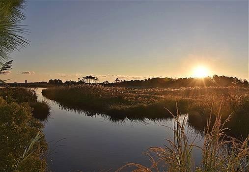 Canal View at Gordon's Pond by Kim Bemis