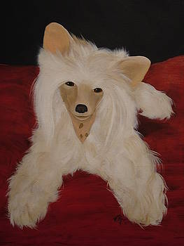 A Chinese Crested Dog by Vickie Roche