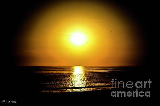 Julian Starks - A Circular Maui Sunset