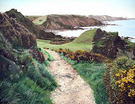 A Coastal Path, Hartland by Mark Woollacott