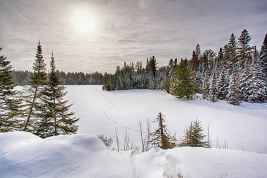 A cold Algonquin winters days  by Peter Pauer
