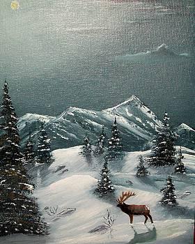 A Cold Montana night by Al  Johannessen