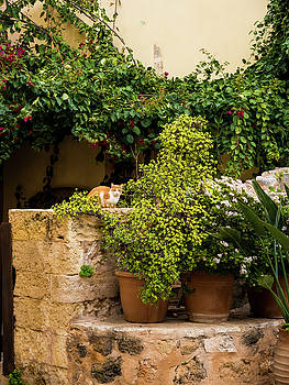 A Corner in Chania by Rae Tucker
