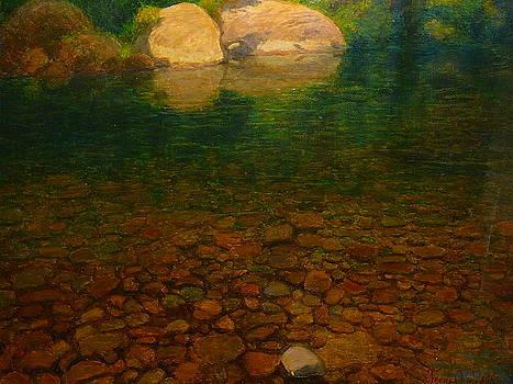 Terry Perham - A Coromandel Stream