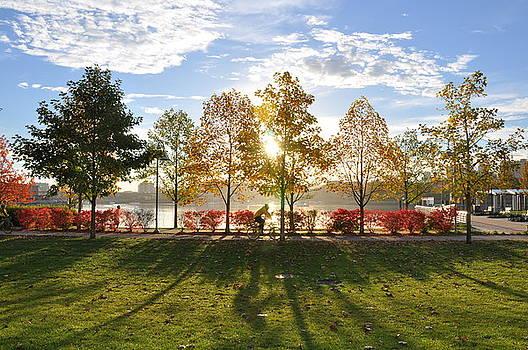 A Crisp Fall Morning by Caroline Reyes-Loughrey