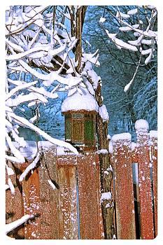 A Crisp Winter's Day by Mario MJ Perron