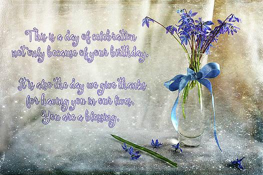 A Day for Celebration by Randi Grace Nilsberg