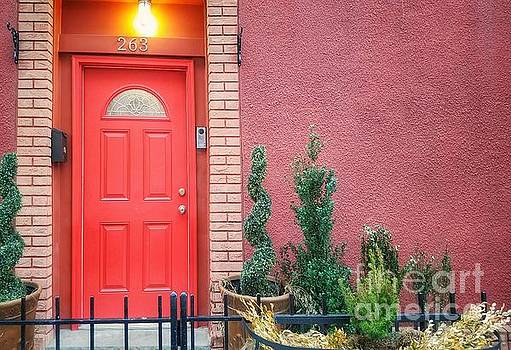 A Doorway in Brooklyn by Mary Capriole