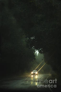 A Drive in the Rain by Margie Hurwich