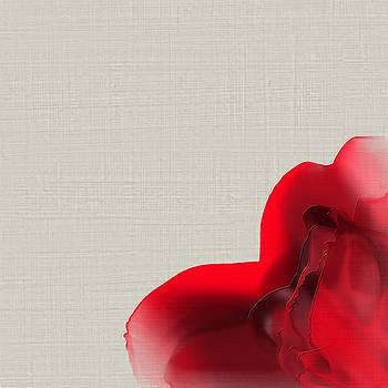 A evening rose for you  by Sir Josef - Social Critic -  Maha Art